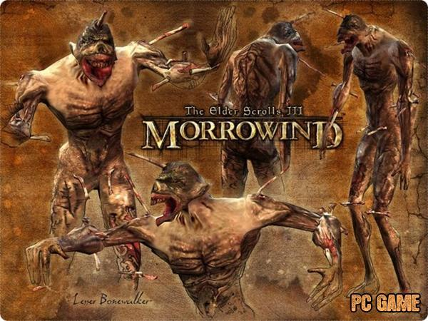 The Elder Scrolls III: Morrowind - gameplay (Balmora)