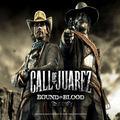 Kody do Call of Juarez: Więzy Krwi (PC)