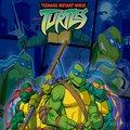 Kody do Teenage Mutant Ninja Turtles (PC)